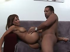 Busty ebony Cassidy Clay sucks a huge black schlong