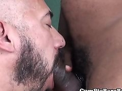 Black bareback bear assfucking mature