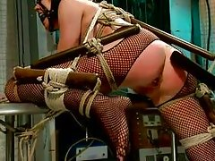 hot brunette milf tied up in bondage