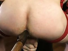 hanged and dildo fucked